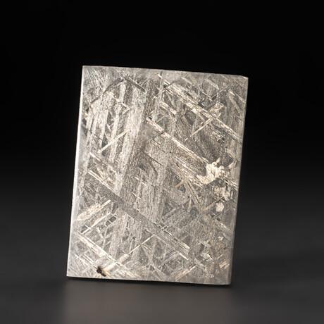 Genuine Natural Seymchan Meteorite Slice + Display Box // 56 g