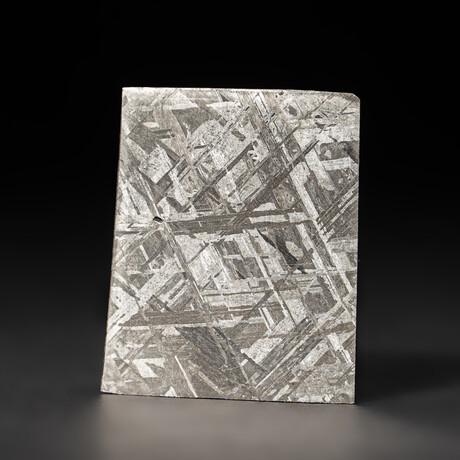 Genuine Natural Seymchan Meteorite Slice + Display Box // 44 g