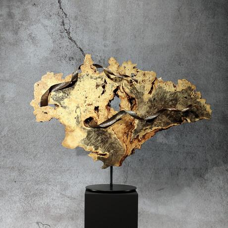 Ocean // Rotating Sculpture