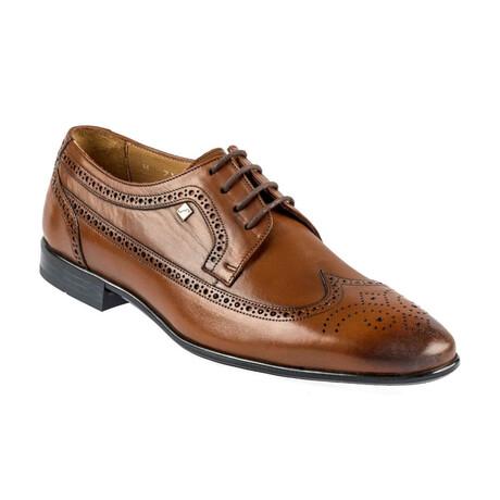 9105 Classic Shoe // Tobacco (Euro: 39)