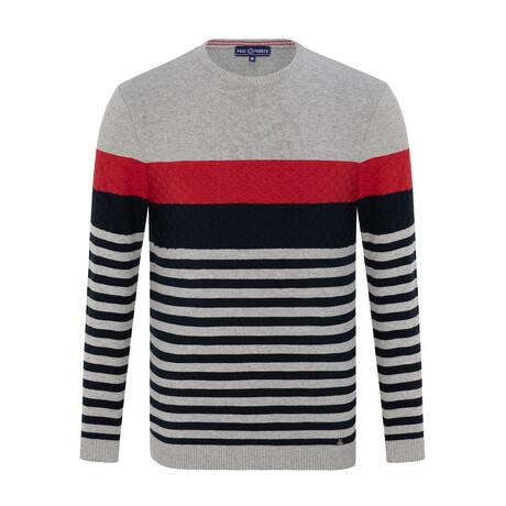 Jeremy Striped Sweater // Gray + Navy (S)
