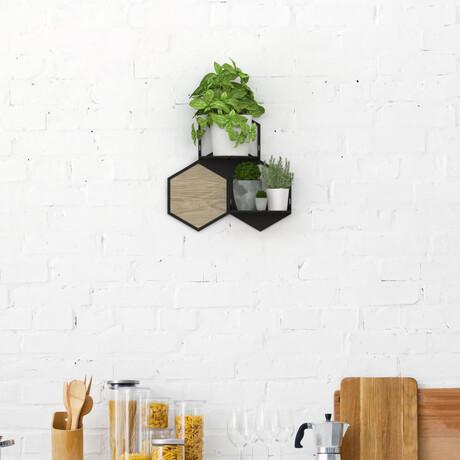 Modular Wall Planter // Small // Model B (White)