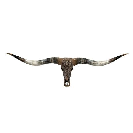 Carved Longhorn Skull // XL Horns // Antique Bronze Mandala // Metallic Finish V.2