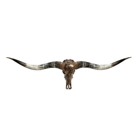 Longhorn Skull // XL Horns // Antique Bronze Storm // Metallic Finish V.1