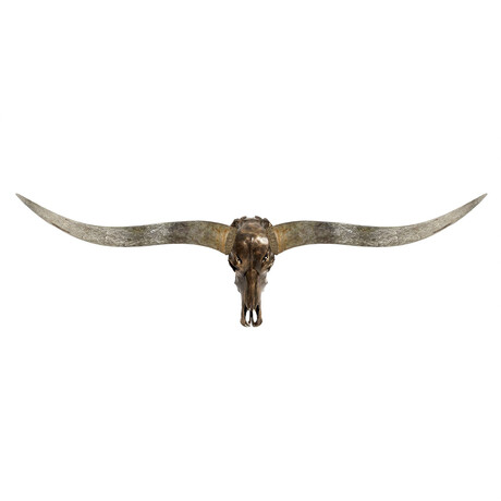 Longhorn Skull // XL Horns // Antique Bronze Storm // Metallic Finish V.2