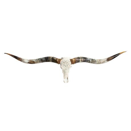 Carved Longhorn Skull // XL Horns // White Mandala V.1