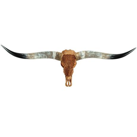 Carved Longhorn Skull // Antique Phoenix
