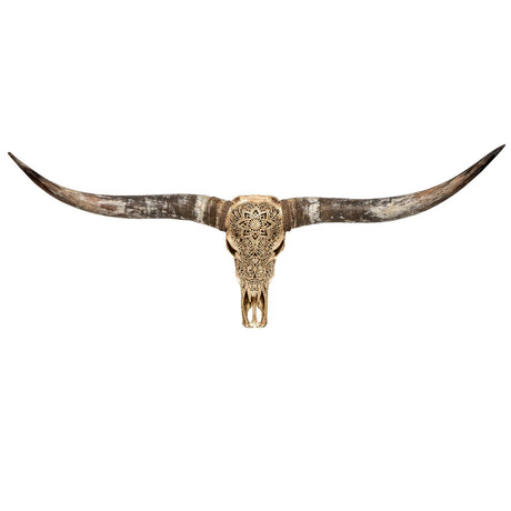 Carved Longhorn Skull // Golden Mandala