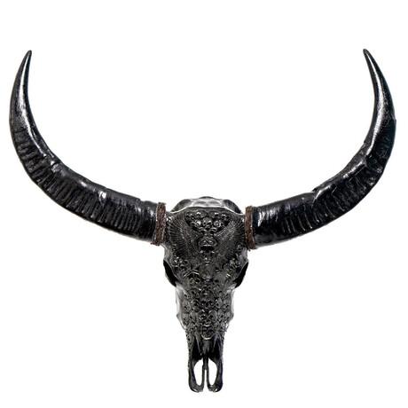 Carved Buffalo Skull // Black From Hell