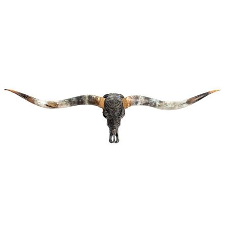 Carved Longhorn Skull // XL Horns // Gray Boho