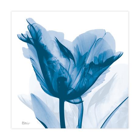 Lusty Blue Tulip