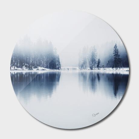 "Nature // 30 (16""Ø)"