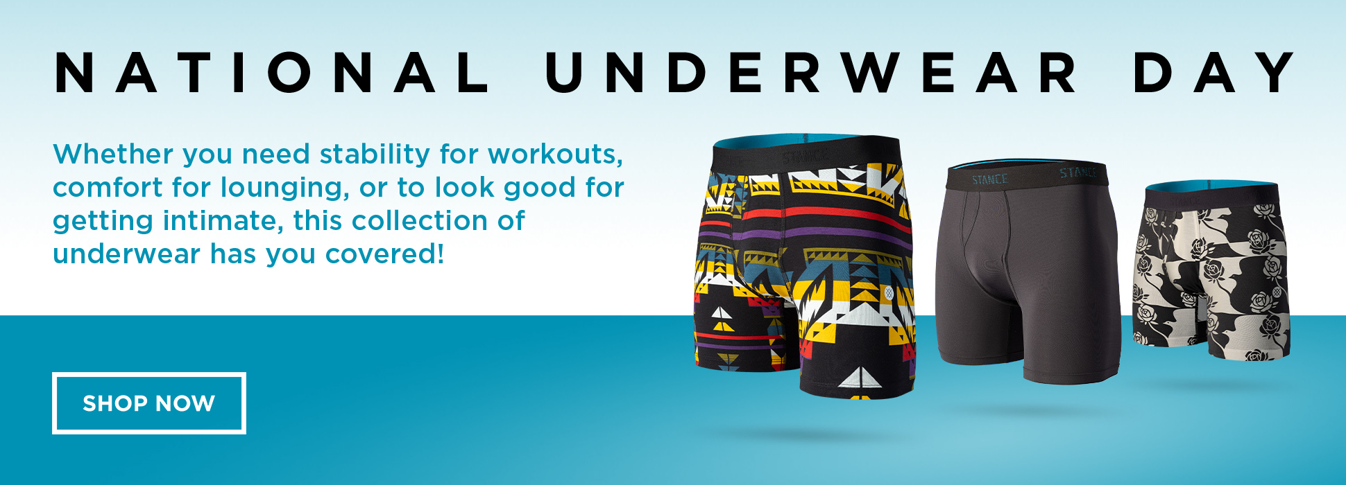 National Underwear Day (Banners)