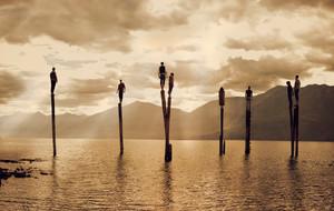 Joel Robison. Fantasy Photography Prints