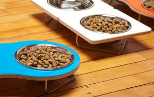 Modern Pet Bowls
