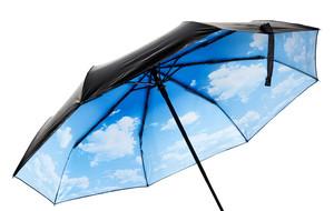 Inspired Umbrellas