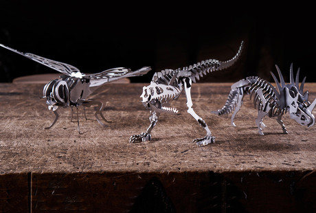 Steel 3D Puzzles
