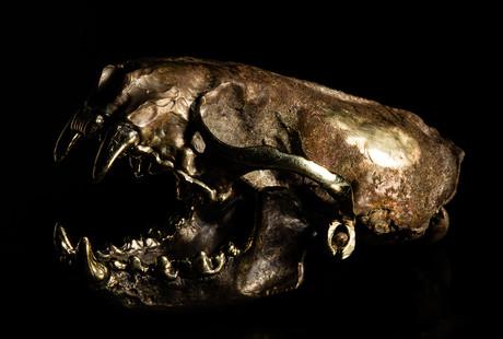 Bronze Skull Sculptures