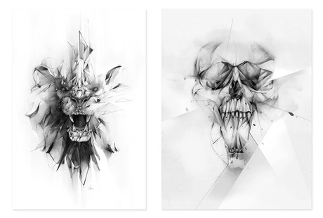 Dynamic Drawings on Canvas