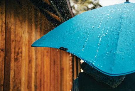 Unflappable Umbrellas
