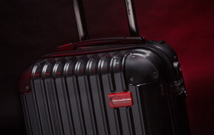 The Bed Bug Killing Luggage
