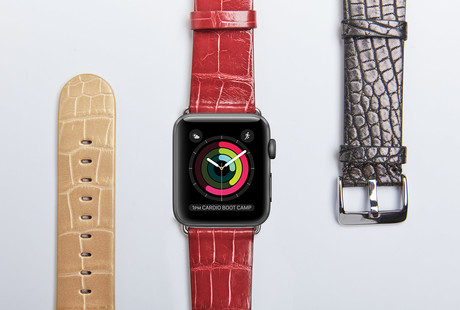 Alligator Apple Watch Bands