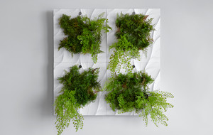 Ambient Indoor Growing Systems
