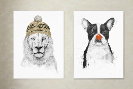 Skull + Animal Art