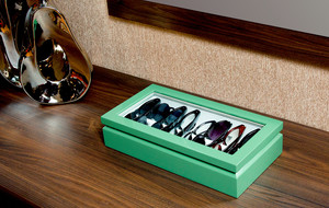 The Luxury Eyewear Organizer