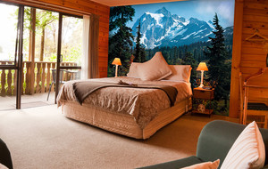 Imaginative Wall Murals