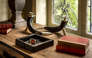 Horn Tabletop Decor