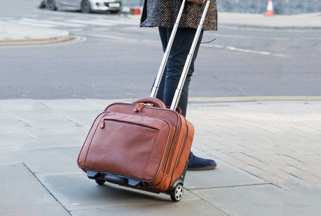 Leather Business + Travel Bags