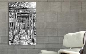 Worldly Black + White Illustrations