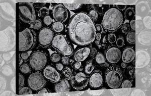 Arboreal Aluminum Artwork