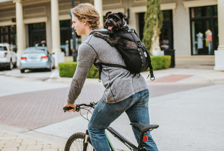 The Tactical Dog Carrier