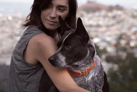 The GPS Dog Collar