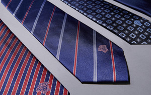 Versace Collection Ties