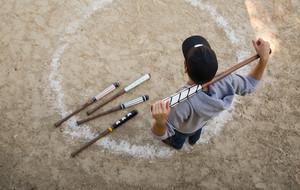 Handmade Baseball Bats