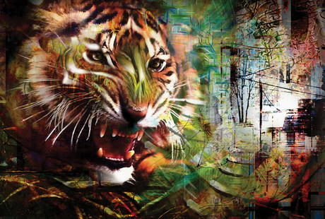 Vibrant + Dynamic Canvas Prints