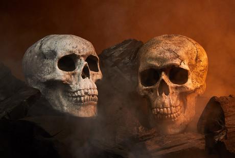Ceramic Fireplace Skulls