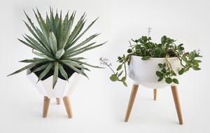 Unusual Modern Planters