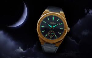 Stardust Watches