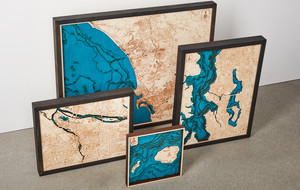 Accurate 3D Wood Maps