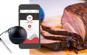 Smart WiFi Meat Thermometer