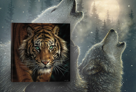 Striking Wildlife Portraits