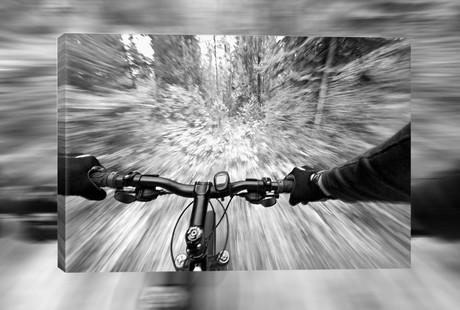 Cycling-Inspired Art Prints