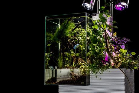 Urban Aquariums + Eco Gardens