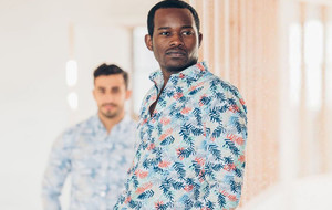 Sophisticated Casual Dress Shirts