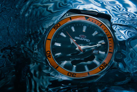 Bold Dive-Style Watches