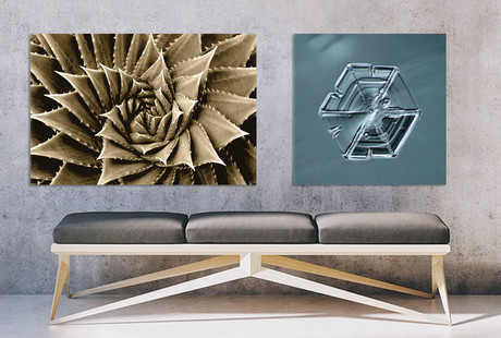 Mind-Bending Canvas Prints